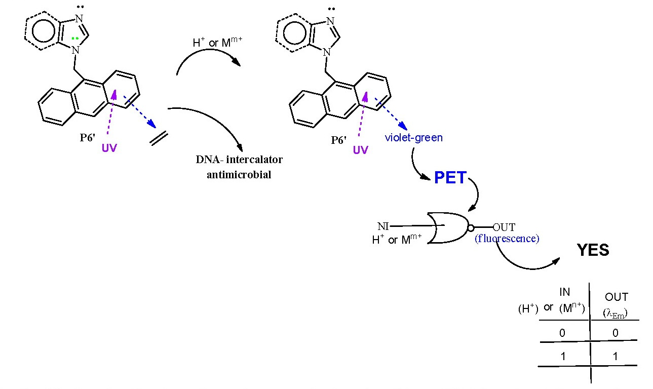 New Polifunctional Nitrogen Derivatives Heterocycles Podants And Diagram Of The Effects Leukemia A Tntc Result Can Be Caused By As Far For P6 Situation Is Quite Analogous Logic Gate Type Yes One Input Mm Output Fluorescence Functioning Via Pet Typical