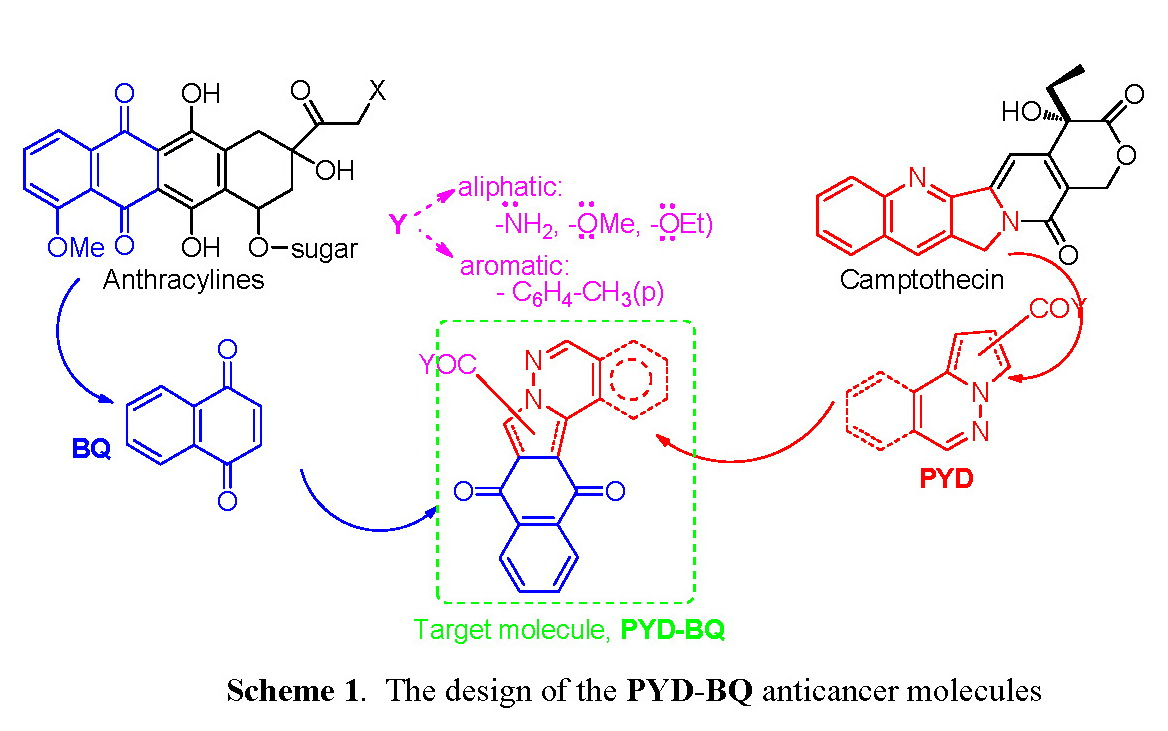 New Polifunctional Nitrogen Derivatives Heterocycles Podants And Diagram Of The Effects Leukemia A Tntc Result Can Be Caused By Pyd Graph Is Represented Fused Pyrrolo Pyridazine Or Phthalazine Moiety Having In Same Structure An Electron P Reach Ring